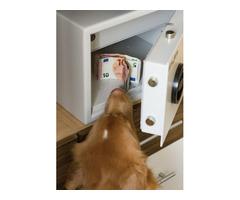 """Unsere Hunde finden Ihr Geld!! """"Geldscheinspürhund.de"""""""